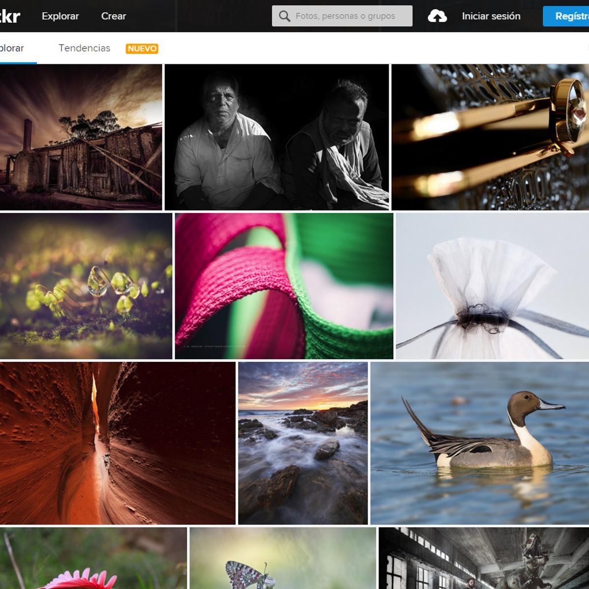 The best Flickr photo downloader