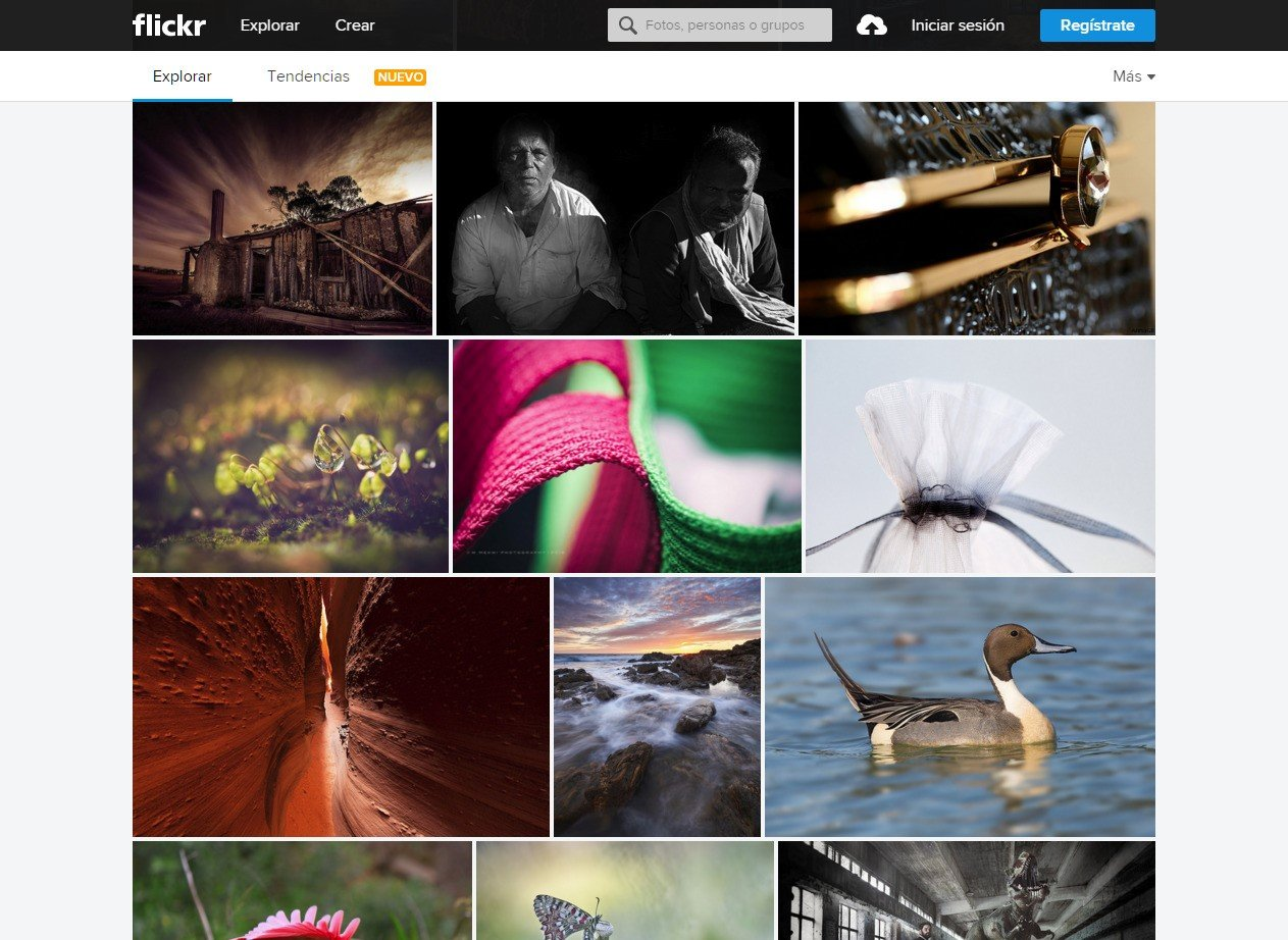 Flickr Alternatives and Similar Software - AlternativeTo net