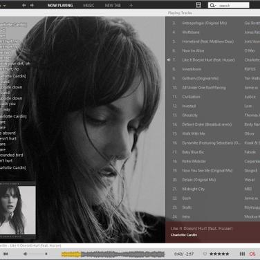 MusicBee Alternatives and Similar Software - AlternativeTo net