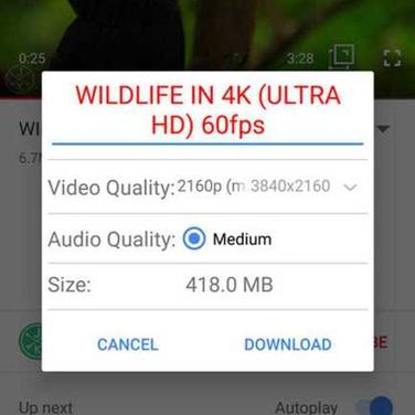 Og youtube old version apk download   YouTube Latest Version