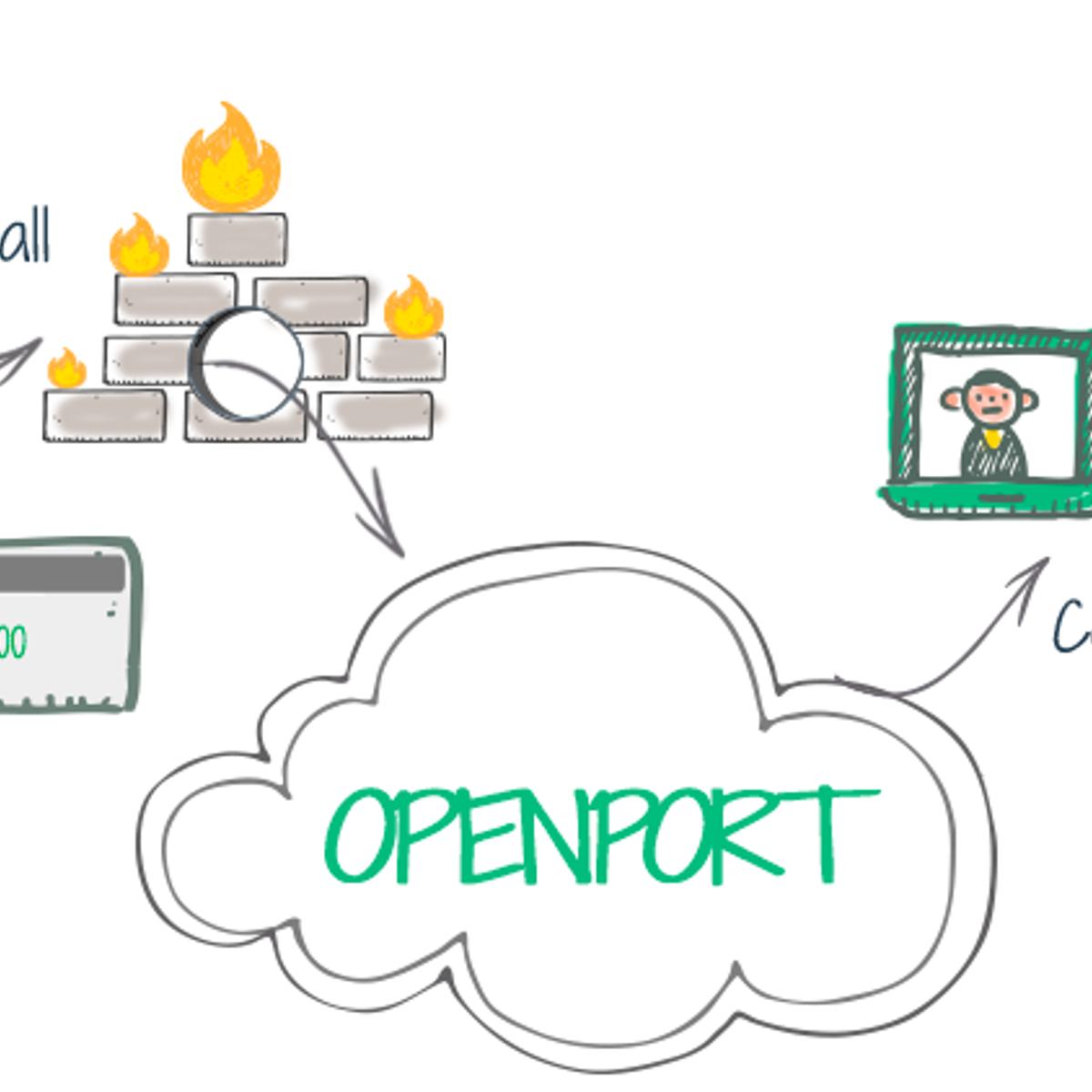 Openport Alternatives and Similar Software - AlternativeTo net