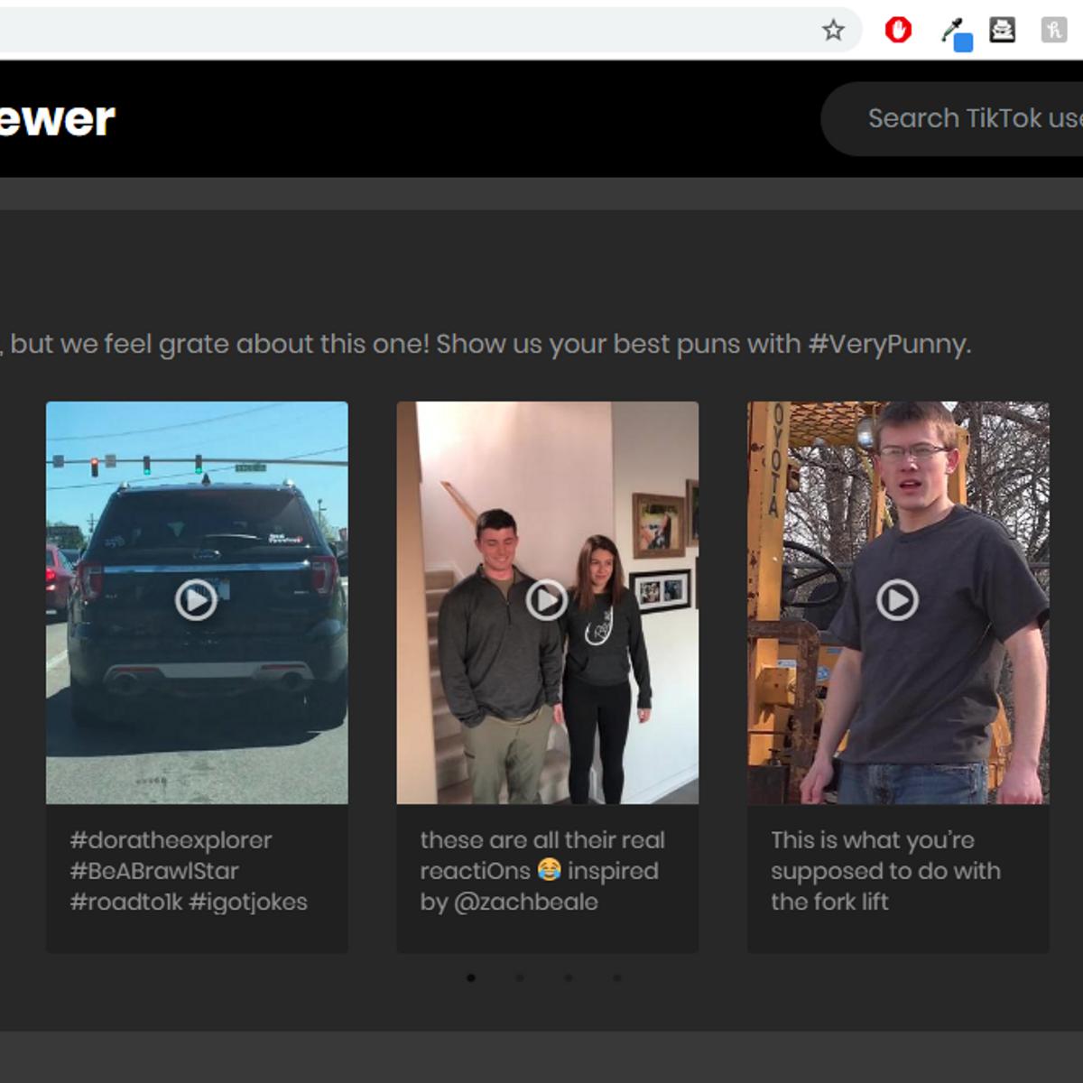 TikTok Online Viewer Alternatives and Similar Websites and