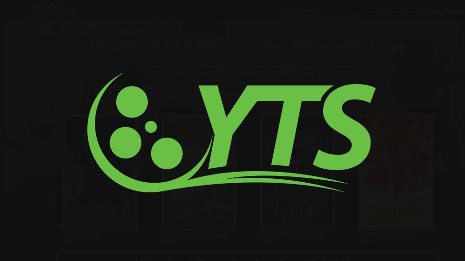 the social network yify torrents